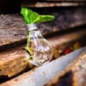 Javni razpis za sofinanciranje vzpostavitve in delovanja kompetenčnega centra za razvoj kadrov v lesni industriji za obdobje 2021-2022